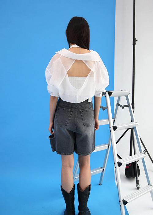Back Point Sheer Blouse (4colors)